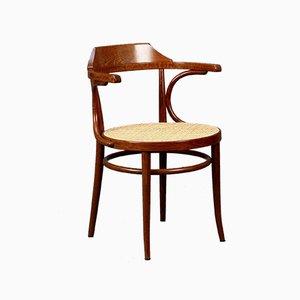 Wiener Modell 233 Stuhl von Thonet, 1990er