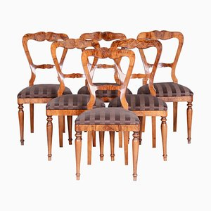 19th Century Walnut Biedermeier Chairs, Austria, 1830s, Set of 6