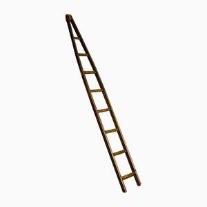 Vintage Ladders, 1970s