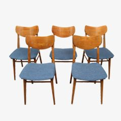 Mid Century German Dining Chairs, Set of 5