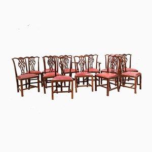 Sedie da pranzo antiche in mogano e pelle di Thomas Chippendale, set di 16
