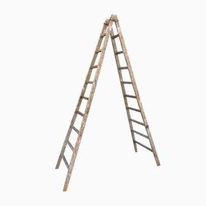 Vintage Painter Step Ladder, 1920s