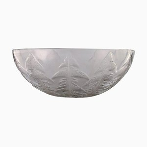 Art Deco Pissenlit Bowl in Clear Art Glass by René Lalique, 1930s