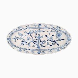 Antiker kolossaler blauer Meissen Zwiebel Fisch Teller aus handbemaltem Porzellan