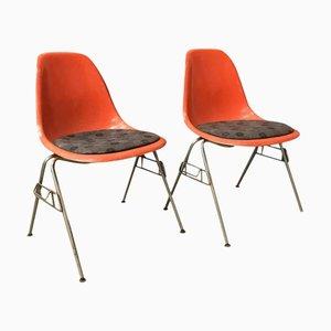 Sedie impilabili DSS in fibra di vetro di Charles & Ray Eames per Herman Miller, anni '70, set di 2
