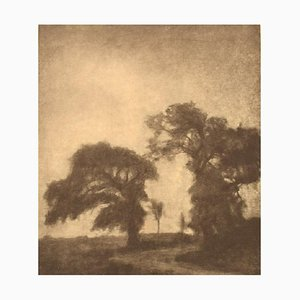Svend Hammershøi Heliogravure with Motif of Trees at Vordingborg, Denmark