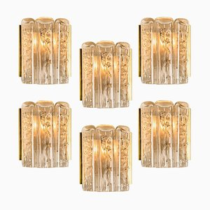 Structured Blown Glass and Brass Wall Sconce by Doria Leuchten Germany, 1960s