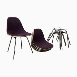 DSS Stuhl auf Glasfaser mit H-Basis von Charles & Ray Eames für Herman Miller, 1960er