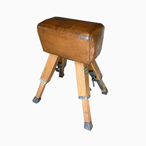 Pommel Horse Bench from De Schelde, 1950s