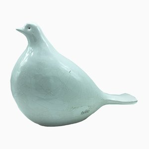 Dove in Glazed Terracotta by Bviero