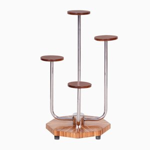 Bauhaus Czech Brown Zebrano Wood Flower Stand from Mücke Melder, 1930s