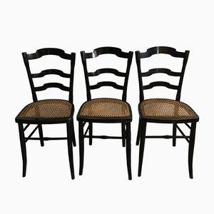 Beistellstühle aus Schilfrohr, 19. Jh. Von F. Carton, 3er Set
