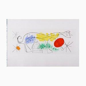 Erik Satie Etching by Joan Miró, 1969
