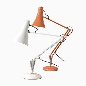 Lampade da tavolo Anglepoise di Herbert Terry per Herbert Terry & Sons, Regno Unito, anni '60, set di 2