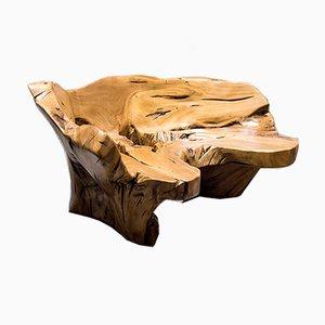 Unique Caacica Bench in Pequi Wood by Hugo França, Brazil