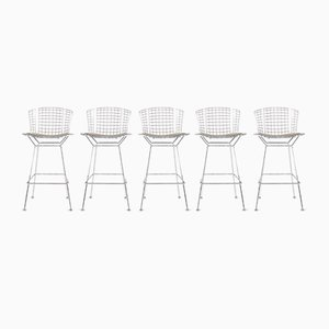 Chrome Stools by Harry Bertoia for Knoll, 2000s, Set of 5