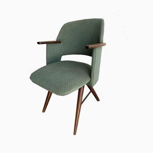 Model FT30 Armchair by Cees Braakman for Pastoe, 1950s