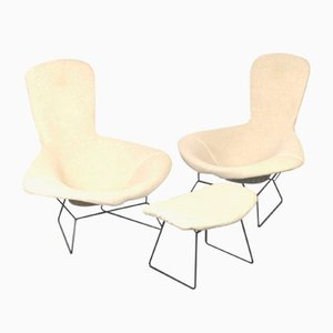 Bird Chairs and Stool Set by Harry Bertoia for Knoll Inc. / Knoll International, 1960s, Set of 3