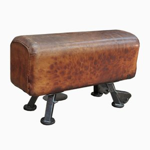 Leather and Metal Adjustable Pommel Horse, 1950s
