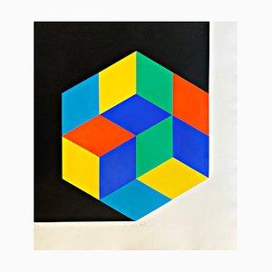Edizione limitata in silkscreen di Victor Vasarely, 1963