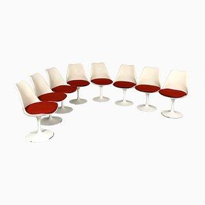 Chaises de Salon Tulip par Eero Saarinen pour Knoll Inc. / Knoll International, 1970s, Set de 8