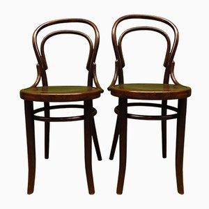 Sedie da pranzo nr. 14 antiche in legno curvato di Mundus & JJ Kohn per Mundus & JJ Kohn, set di 2