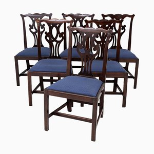 Antike Chippendale Esszimmerstühle aus Mahagoni, 1900er, 6er Set