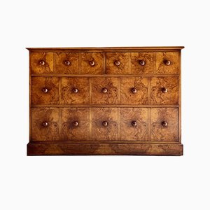 Antique Victorian Burl Walnut Spice Drawers, 1890s