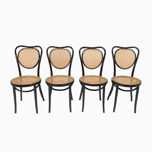 Chaises de Salle à Manger Mid-Century en Bois Courbé & Jonc par Michael Thonet pour ZPM Radomsko, 1960s, Set de 4