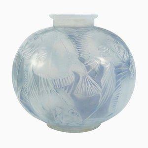 Opalglas Modell Poissons Vase René Lalique, 1920er