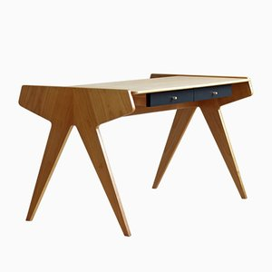 Desk by Helmut Magg for WK Möbel, Germany, 1950s