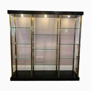 Large Brass and Glass Illuminated Wall Unit from Belgo Chrom, 1970s