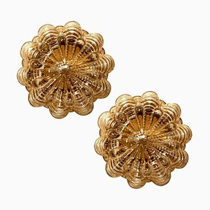 Amber Bubble Flush Mounts or Wall Sconces by Helena Tynell for Glashütte Limburg, 1970s, Set of 2