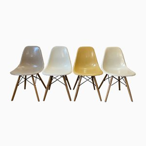 Mid-Century Elephant Gray DSW and Light Oak Dining Chairs by Charles & Ray Eames for Herman Miller, Set of 4