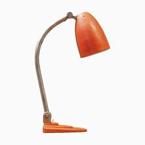 Bauhaus Metal Table Lamp from Gispen, 1920s