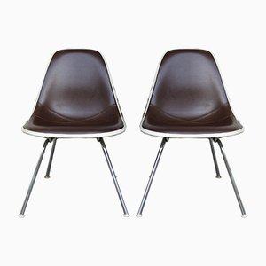 Mid-Century Naugahyde Stühle von Charles & Ray Eames für Herman Miller, 2er Set