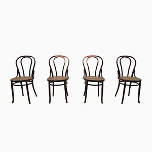 Dining Chairs by Michael Thonet for Artigiano, Set of 4