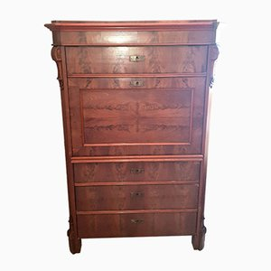 Antique Biedermeier Burl Wood Secretaire