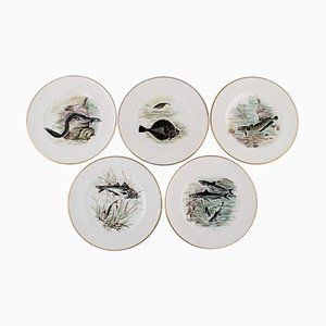 Plates in Hand-Painted Porcelain with Fish Motifs from Bing & Grondahl, 1920s, Set of 5