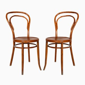 Bentwood Dining Chairs from Horgenglarus, Switzerland, 1920s, Set of 2