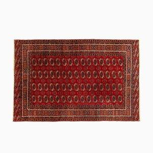 Turkmen Carpet, 1960s