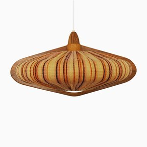 Pendant Lamp from Temde, 1960s