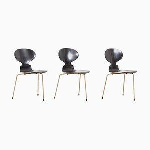 Sedie da pranzo Ant di Arne Jacobsen per Fritz Hansen, Danimarca, anni '50, set di 3