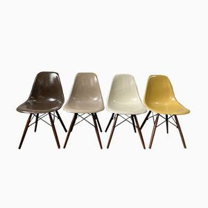 Mid-Century Brown and Greige Walnut DSW Chairs by Charles & Ray Eames for Herman Miller, Set of 4
