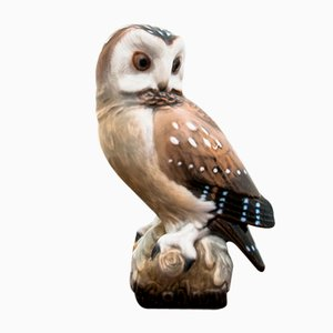 Hand Painted Owl Figurine from Royal Crown, 1940s