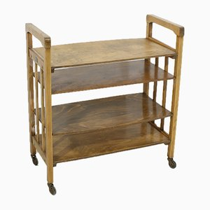 Vintage Bookshelf Trolley for P. u. B. Abele, 1930s