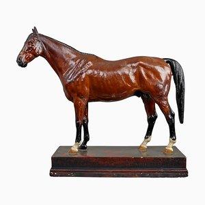 Vollblut Mare Horse Modell aus Bemaltem Gips von Max Landsberg, Berlin, 1891