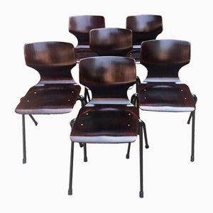 Mid-Century Dining Chairs from Pagholz Flötotto, Set of 6
