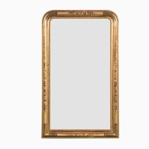 Louis Philippe Flower Mirror