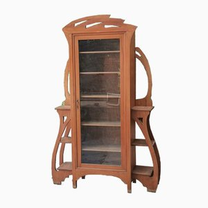 Art Nouveau Walnut Display Case, 1900s
